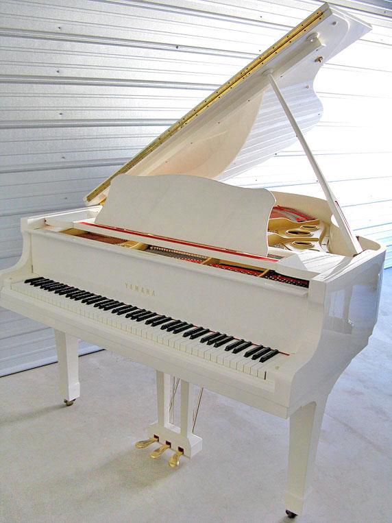 Tom Lepinski Piano 915 203 2566